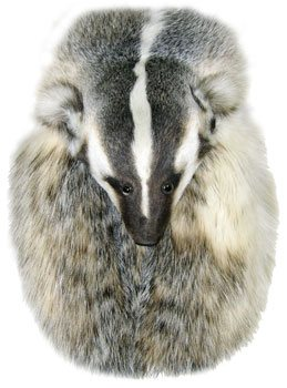 Badger Head On Full Mask Formal Fur Sporran